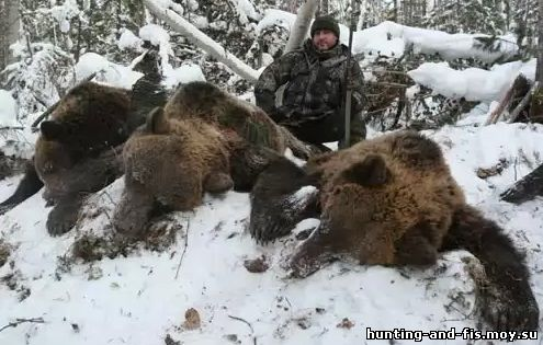 Охота на медведя в сибири